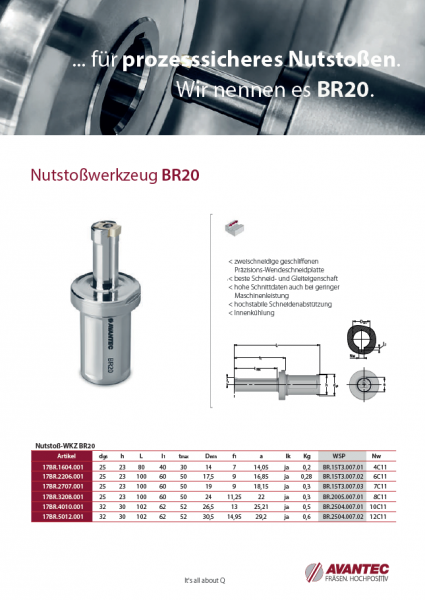 Nutstosswerkzeug BR20 DE